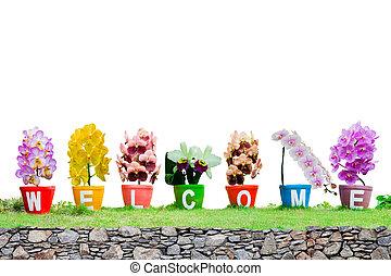 gemaakt, woord, welkom, vrijstaand, jardiniere, achtergrond, witte bloemen, orchidee