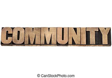 gemeenschap, in, hout, type