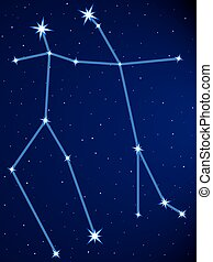 Gemini constellation on the starry sky