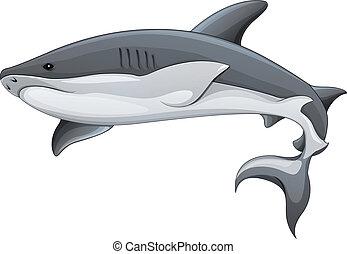 genérico, tiburón, ilustración