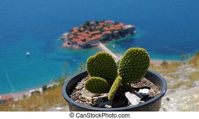 General good view of Sveti Stefan. Montenegro. cactus -...