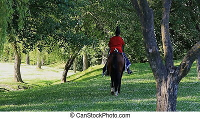 General - Napoleonic overall riding