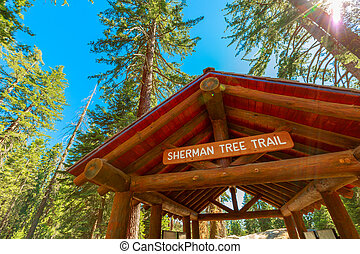 General Sherman tree trail gate in Sequoia National Park, ...