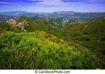 mountains landscape in summer. Picos de Europa