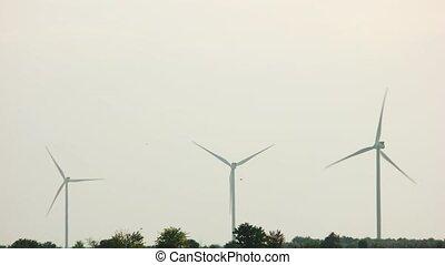 generation., turbines, énergie éolienne, électrique