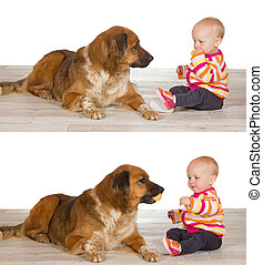 Generous baby sharing biscuit with dog - Two sequential...