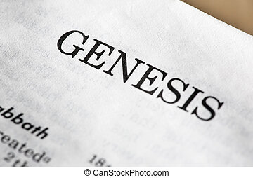 The book of genisis in the bible