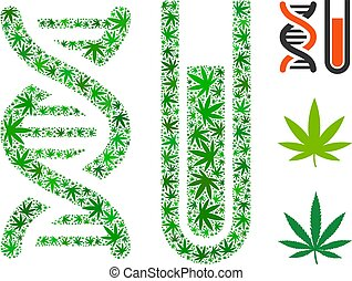 Genetic analysis composition of weed leaves in different sizes and green variations. Vector flat weed objects are composed into genetic analysis composition. Addiction vector design concept.
