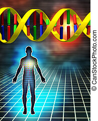 Dna as the building block of human being. Digital illustration.