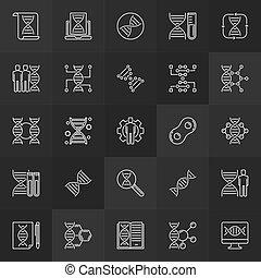 Genetic engineering vector linear icons. Genetics line signs...