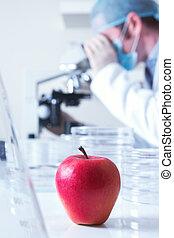 geneticamente modificato, mela rossa