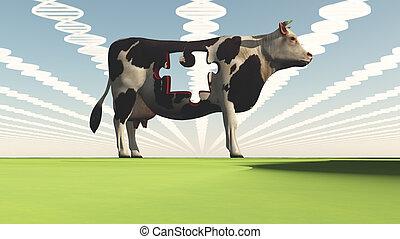 geneticly, modifié, vache