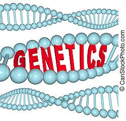 genetik, -, wort, dns