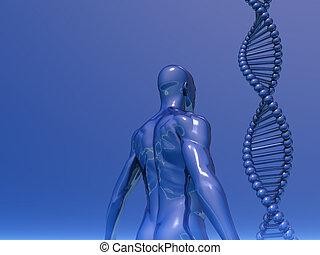 genetisch
