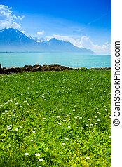 Geneva lake in summer