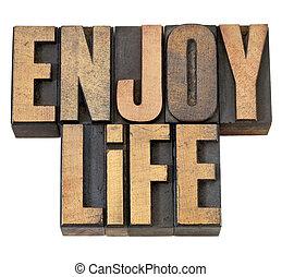genieten, leven, hout, type