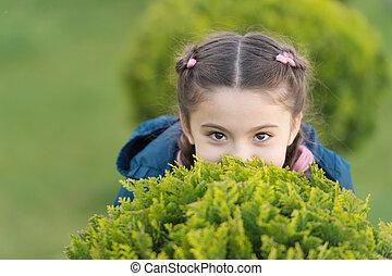 genieten, schattig, hairstyle, happy., meisje, zoeken, outdoors., wat, verbergen, vlechten, achtergrond., geitje, vrolijke , toneelstuk, relaxen, spel, kind, het verbergen, gezonde , relax., groene, emotioneel, gras, maakt