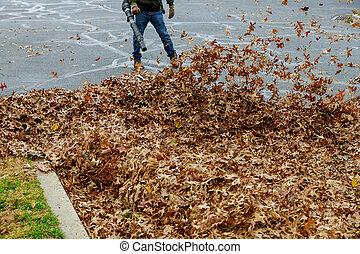 gens, feuilles, automne, balais, nettoyage, territoire