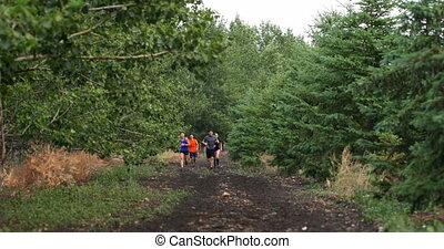 gens, mélangé-race, crise, vue, forêt, jogging, 4k, chemin, devant