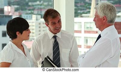 gens parler, business, sérieusement, ensemble