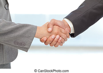 gens, poignée main, business, deux, entre