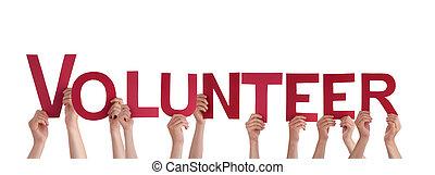 gens, tenue, volontaire