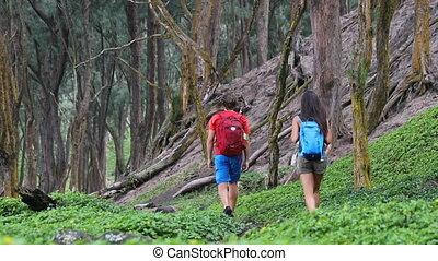 gens, vert, randonnée, forêt, randonnée, vivant, vie, piste...
