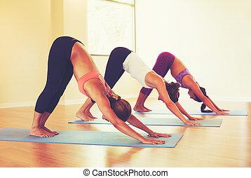 gente, clase, practicar, yoga, abajo perro, postura