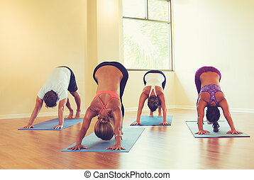 gente, practicar, abajo perro, postura, en, clase yoga