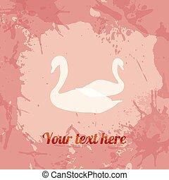 gentile, swans., scheda