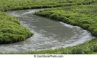 Gentle mountain stream