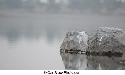 Gentle water Flowing on rocks with rock reflection evening time