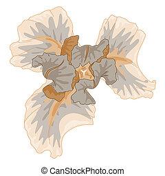 Gentle watercolor iris.