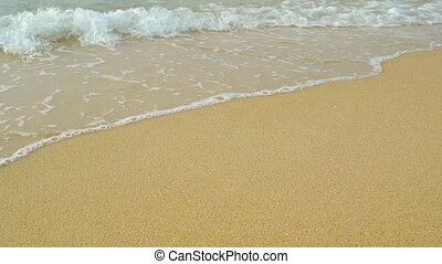 Gentle Waves and Sea Foam Washing over a Tropical Beach -...