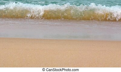 Gentle Waves Roll onto a Tropical Beach. Video