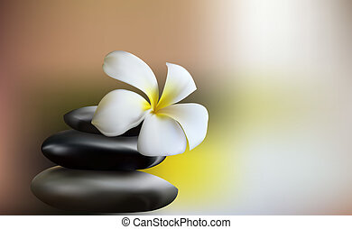 Gentle white Orchid as a symbol of relaxation and care in...