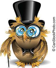 gentleman owl