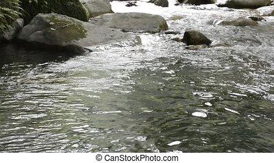 Gently brook flowing