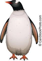 gentoo ペンギン