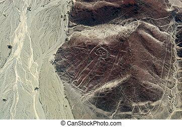 geoglyphs, und, linien, in, der, nazca, desert., peru