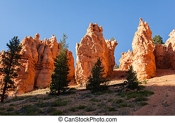 Geological formations in Bryce canyon national park in Utah