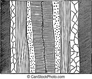 Geological Vein, illustration showing quartz vein (center) splitting a baryte layer into two, vintage engraved illustration. Trousset encyclopedia (1886 - 1891).