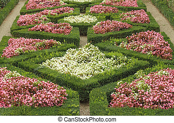 geometric flowerbed in Boboli Gardens in Florence,Unesco World H
