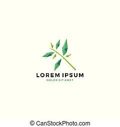 geometric leaf herb