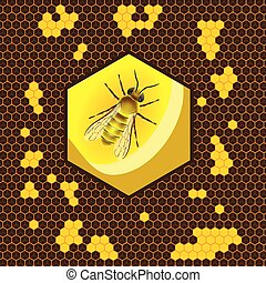 Geometric pattern with honeycomb and bee in the center. Flat background vector illustration.