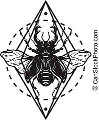 geometrico, cervo, elements., scarabeo
