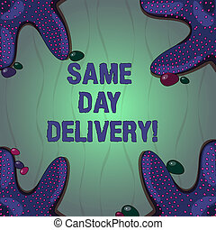geordend, tekst, vier, ons, delivery., kaarten., steentjes, ...