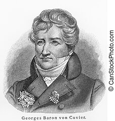 georges, baron, cuvier