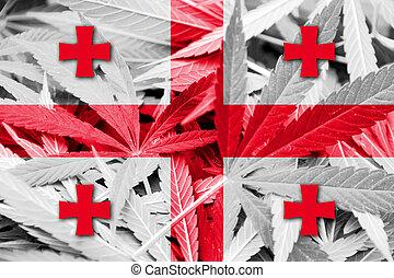 georgia läßt, auf, cannabis, hintergrund., droge, policy., legalization, von, marihuana