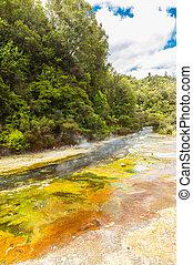 Geothermal river - Steaming thermal river. Rotorua, Waimangu...